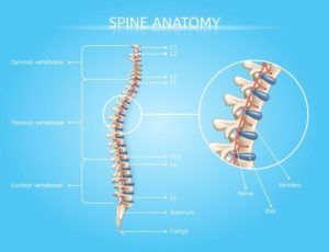 Singapore Spine Specialist